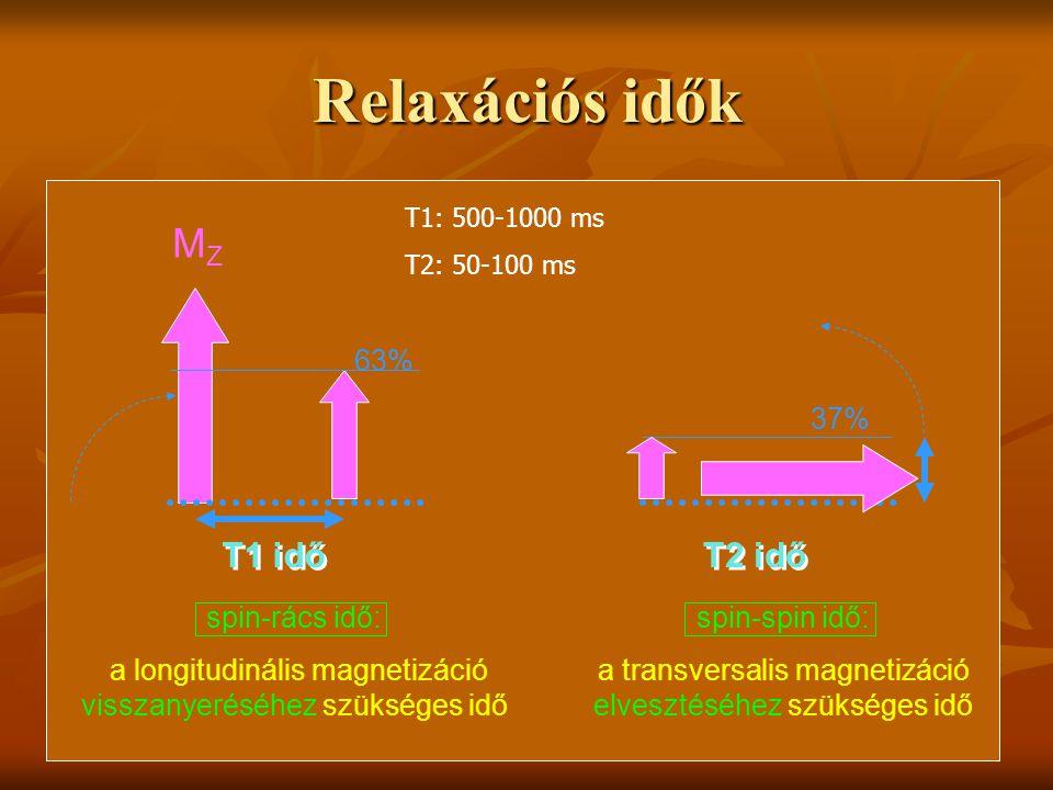 Relaxációs idők MZ T1 idő T2 idő 63% 37% spin-rács idő: