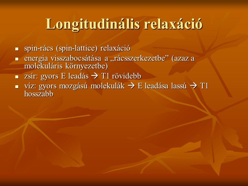 Longitudinális relaxáció