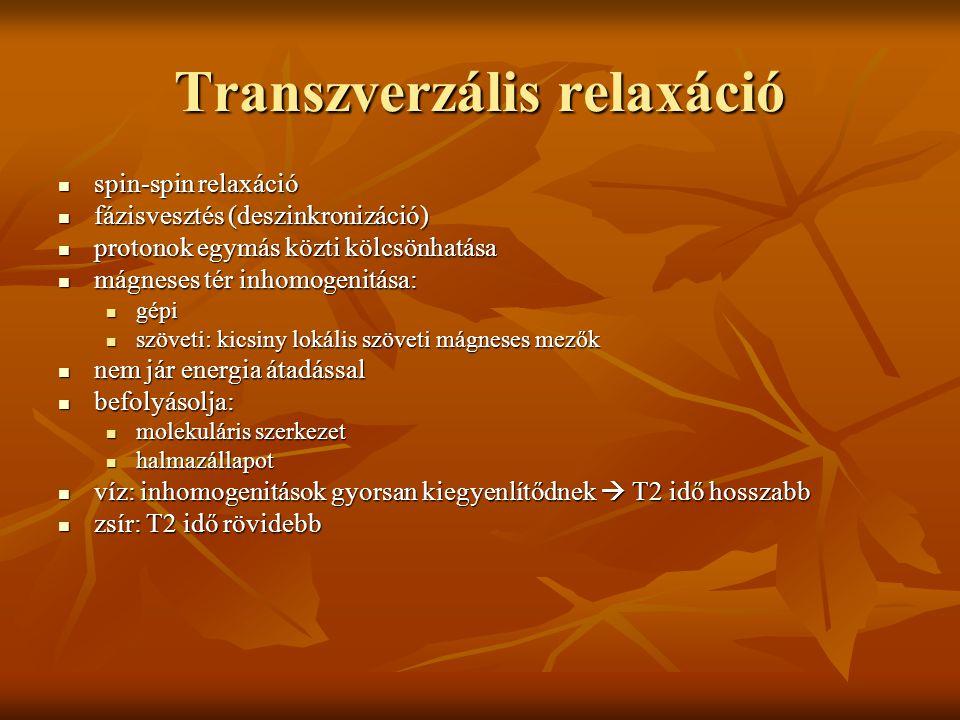 Transzverzális relaxáció