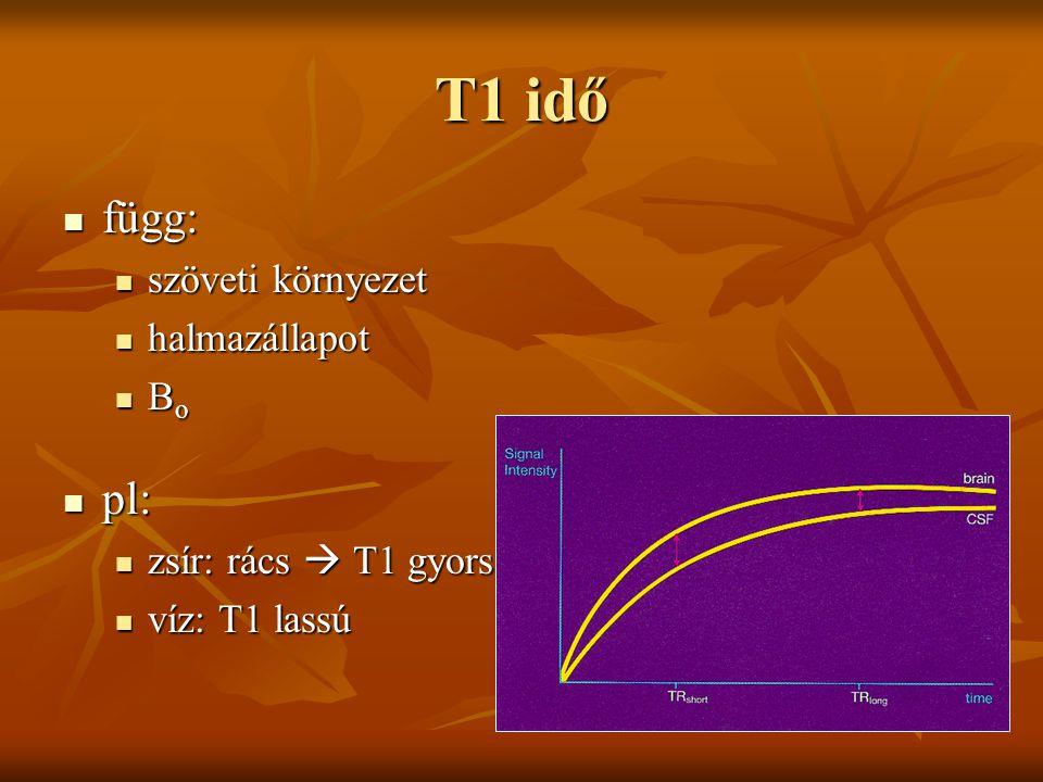 T1 idő függ: pl: szöveti környezet halmazállapot Bo