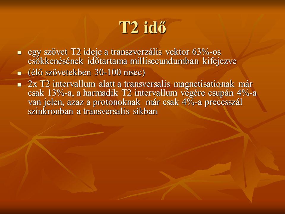 T2 idő egy szövet T2 ideje a transzverzális vektor 63%-os csökkenésének időtartama millisecundumban kifejezve.