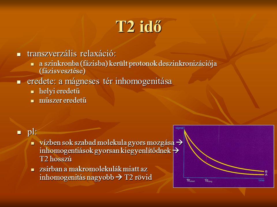 T2 idő transzverzális relaxáció: