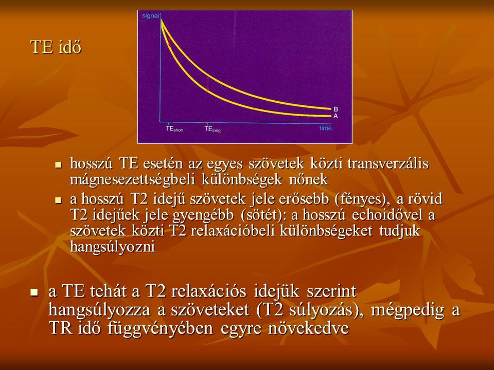 TE idő hosszú TE esetén az egyes szövetek közti transverzális mágnesezettségbeli különbségek nőnek.