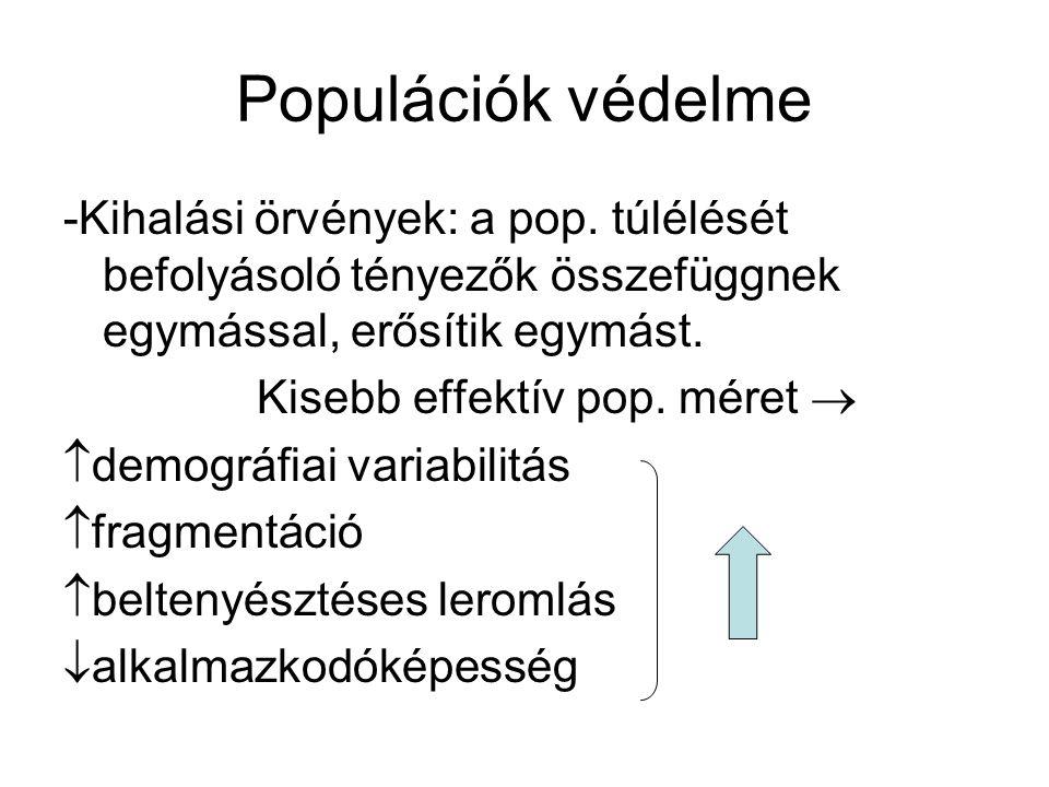 Populációk védelme -Kihalási örvények: a pop. túlélését befolyásoló tényezők összefüggnek egymással, erősítik egymást.