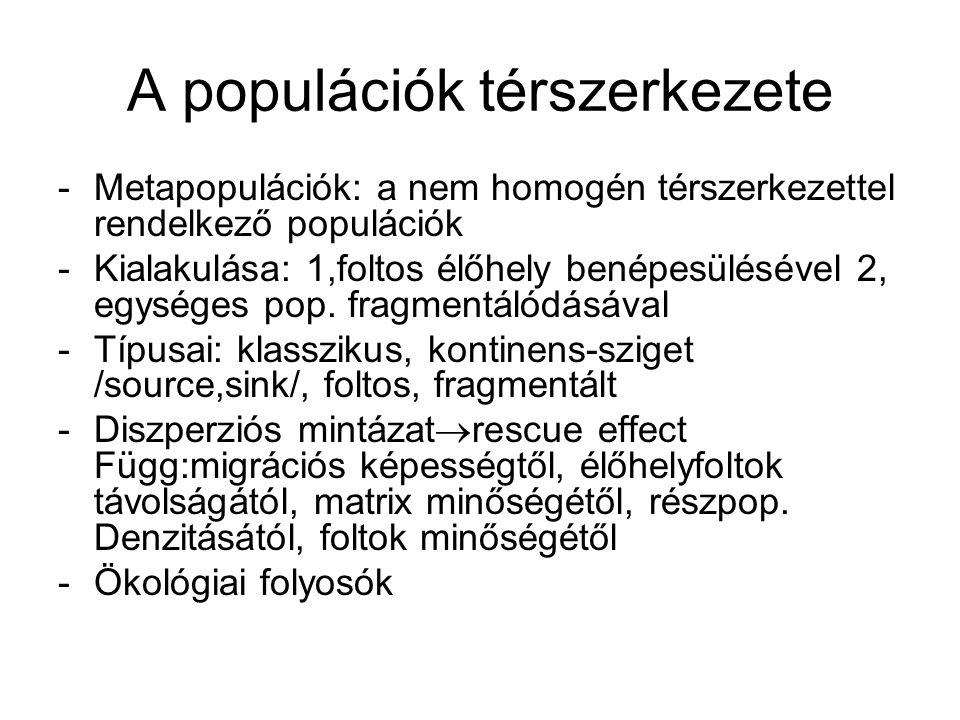 A populációk térszerkezete