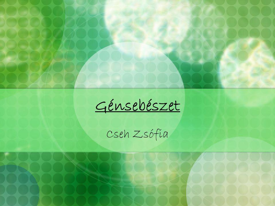 Génsebészet Cseh Zsófia