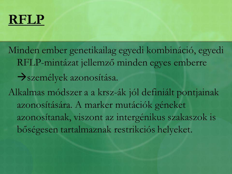 RFLP Minden ember genetikailag egyedi kombináció, egyedi RFLP-mintázat jellemző minden egyes emberre.
