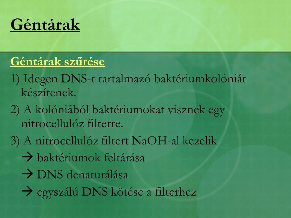 Géntárak Géntárak szűrése