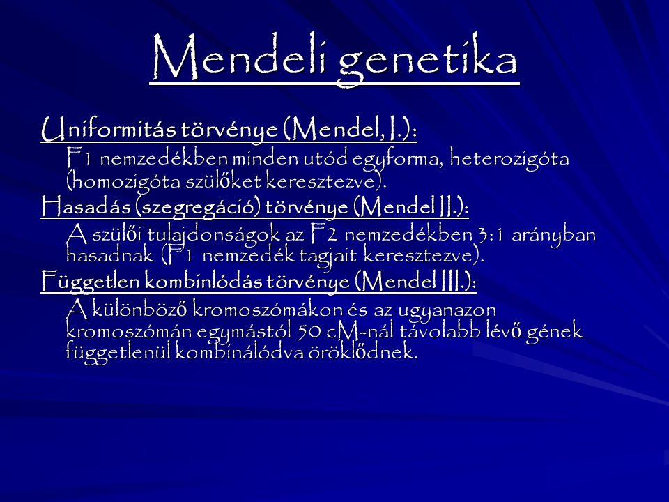 Mendeli genetika Uniformitás törvénye (Mendel, I.):