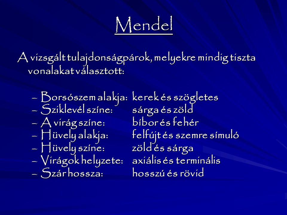 Mendel A vizsgált tulajdonságpárok, melyekre mindig tiszta vonalakat választott: Borsószem alakja: kerek és szögletes.