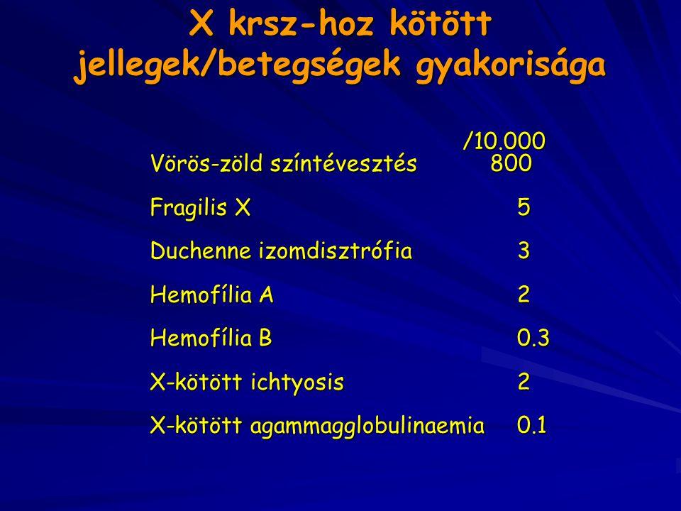 X krsz-hoz kötött jellegek/betegségek gyakorisága