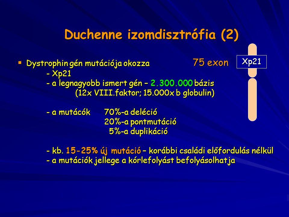 Duchenne izomdisztrófia (2)