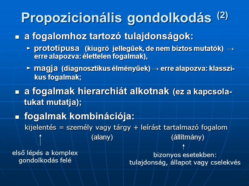 Propozicionális gondolkodás (2)
