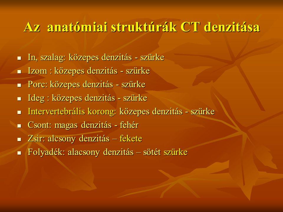 Az anatómiai struktúrák CT denzitása