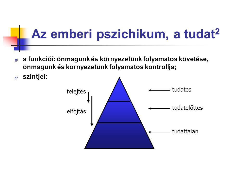 Az emberi pszichikum, a tudat2