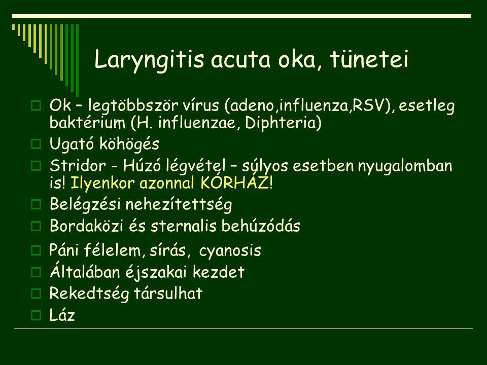 Laryngitis acuta oka, tünetei