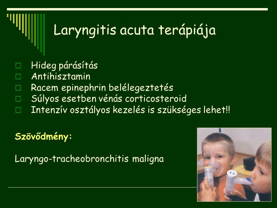 Laryngitis acuta terápiája