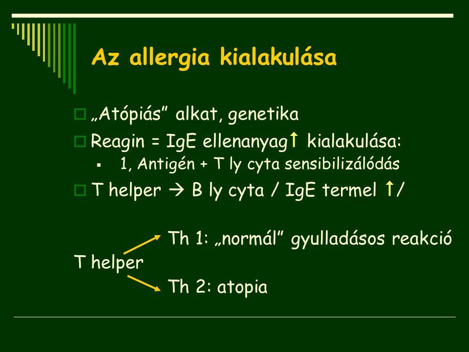 Az allergia kialakulása