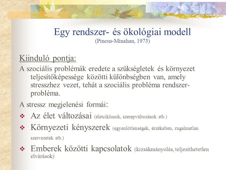 Egy rendszer- és ökológiai modell (Pincus-Minahan, 1973)