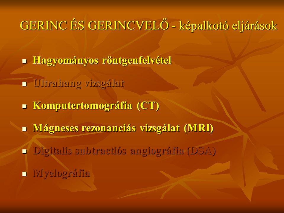 GERINC ÉS GERINCVELŐ - képalkotó eljárások