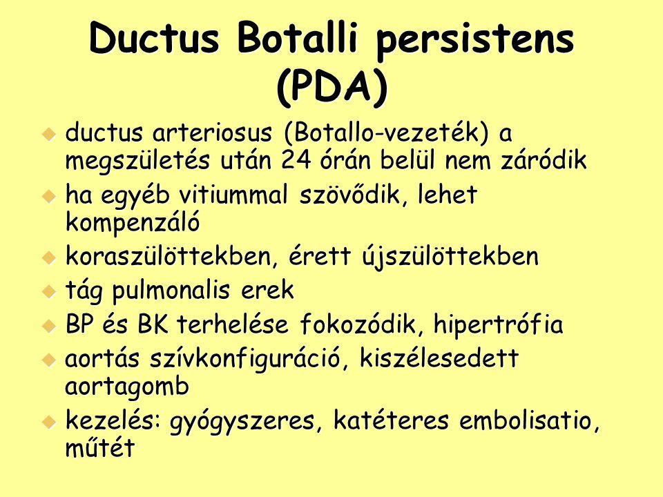Ductus Botalli persistens (PDA)