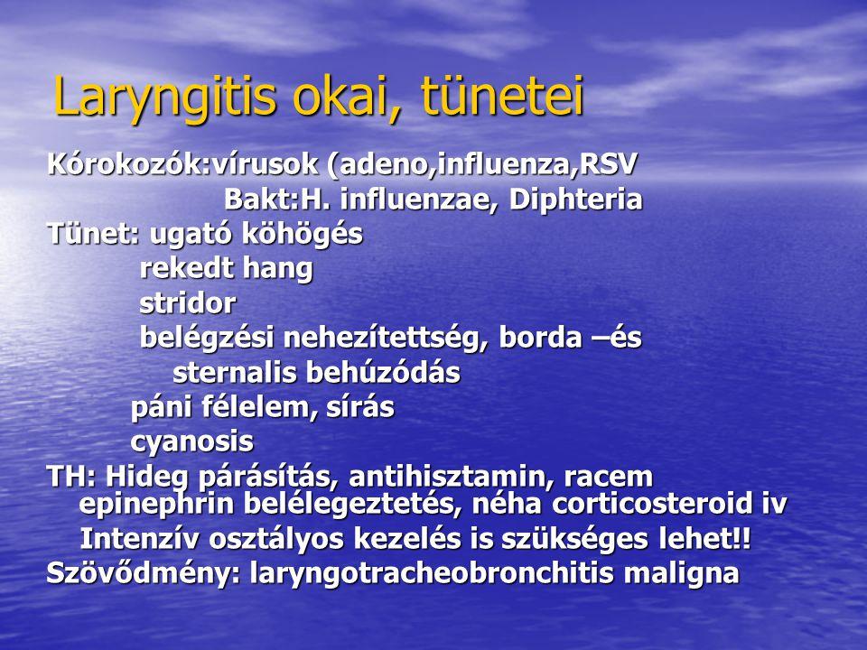 Laryngitis okai, tünetei