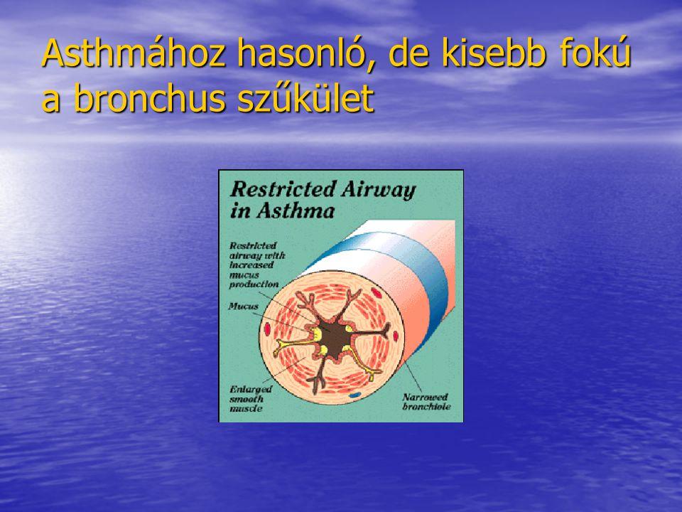 Asthmához hasonló, de kisebb fokú a bronchus szűkület