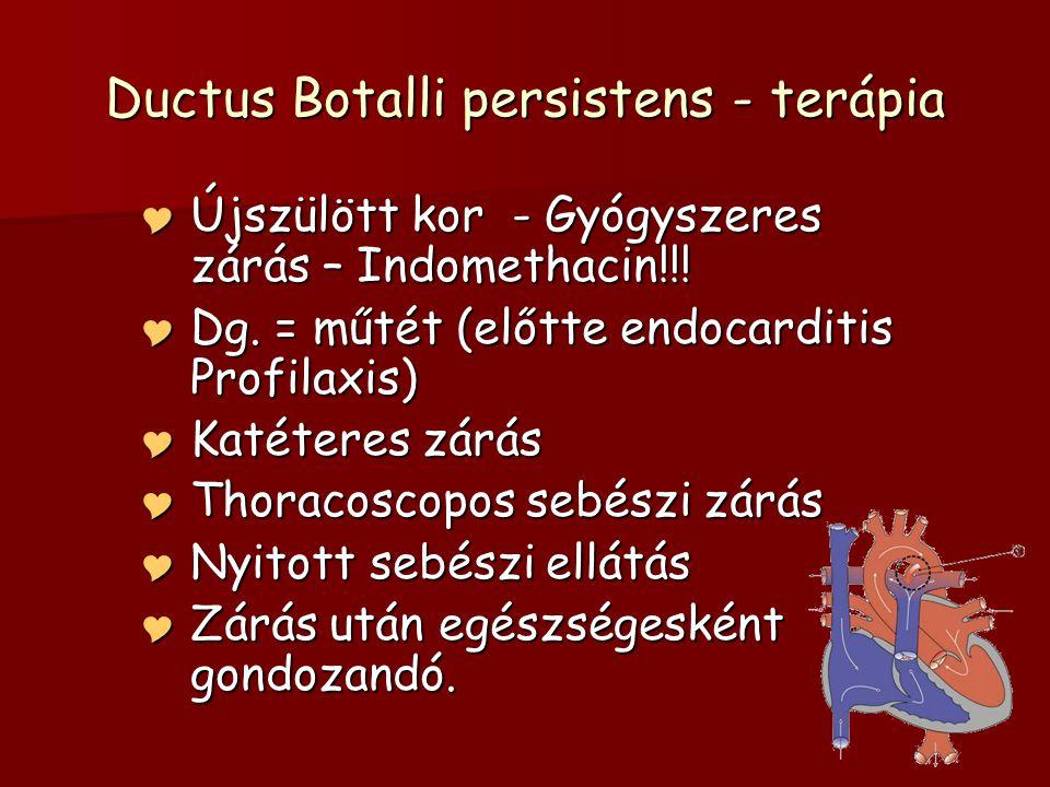 Ductus Botalli persistens - terápia