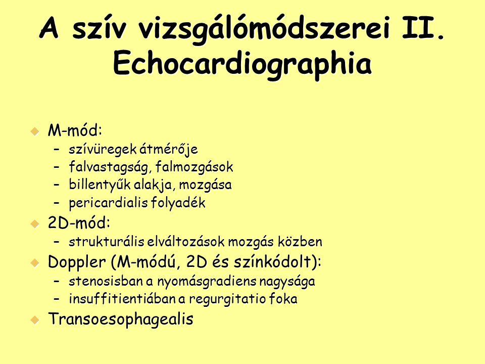 A szív vizsgálómódszerei II. Echocardiographia