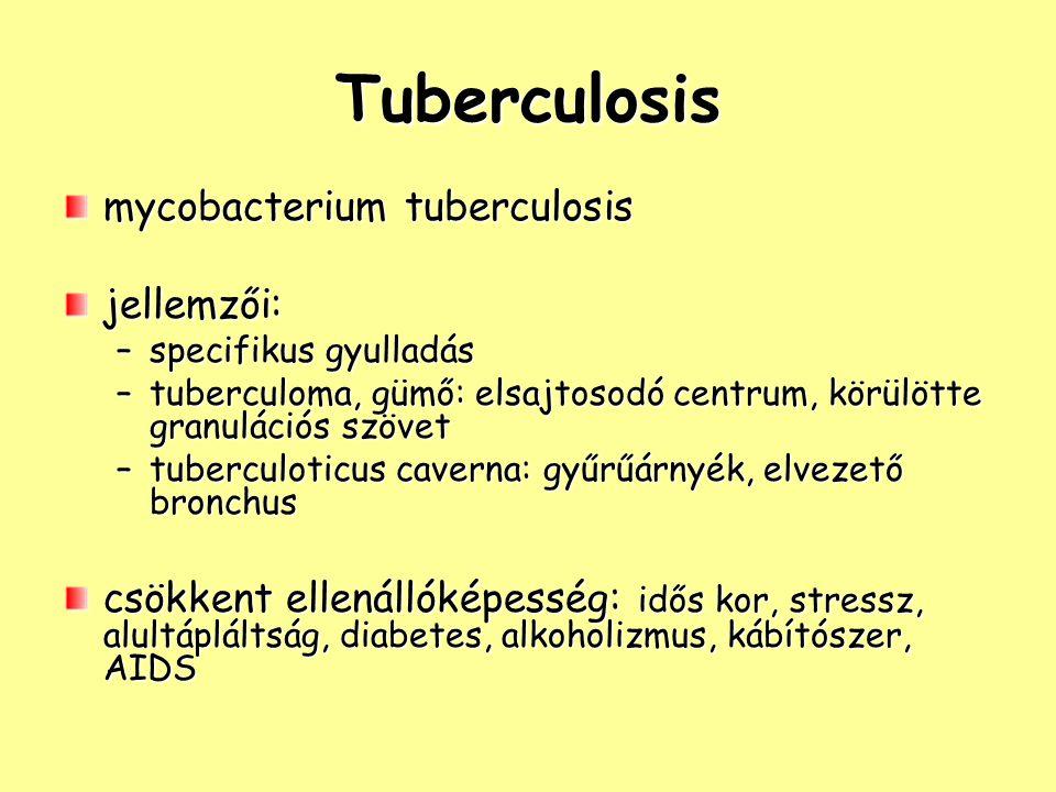 Tuberculosis mycobacterium tuberculosis jellemzői: