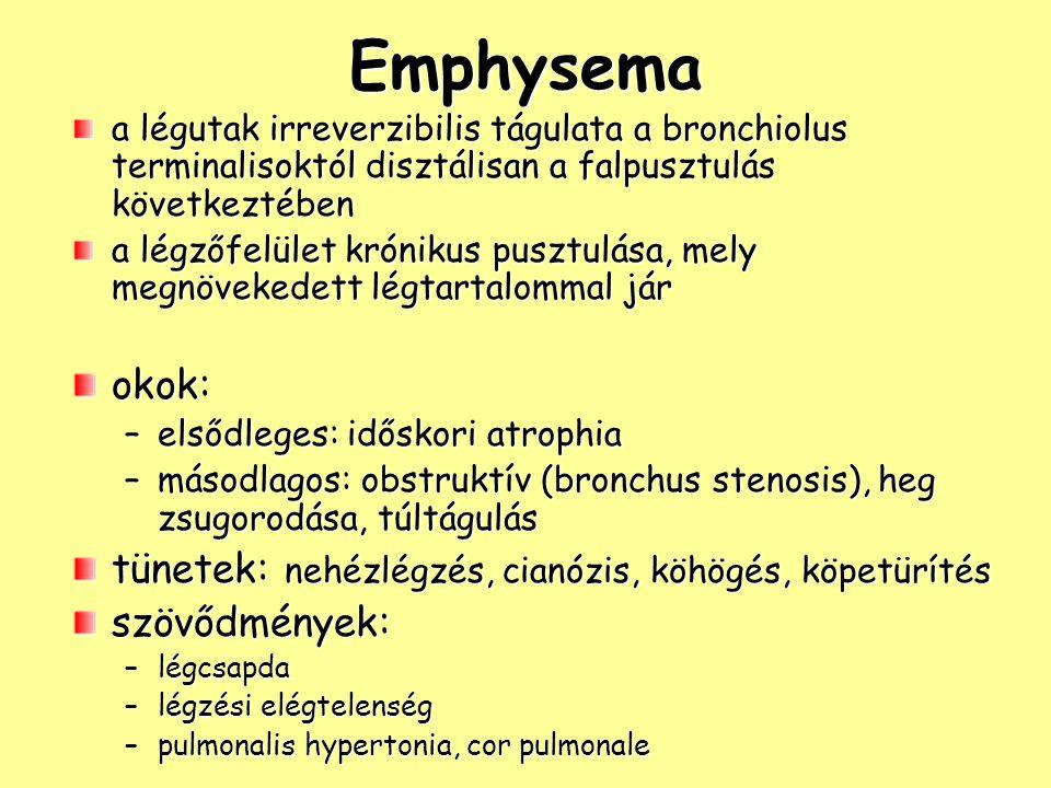Emphysema okok: tünetek: nehézlégzés, cianózis, köhögés, köpetürítés
