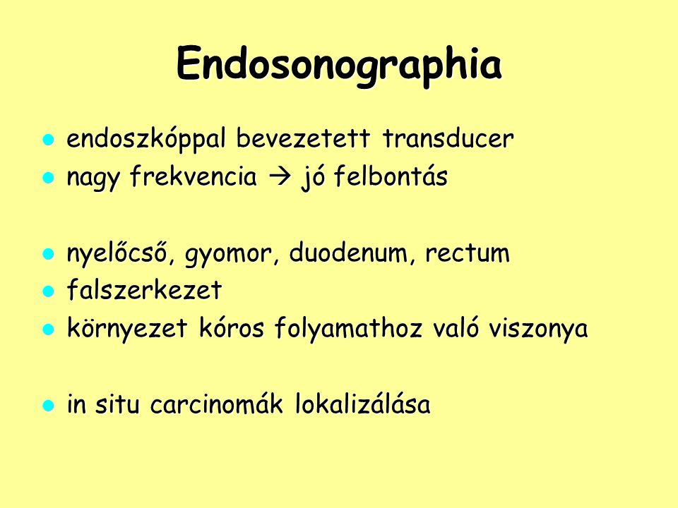 Endosonographia endoszkóppal bevezetett transducer