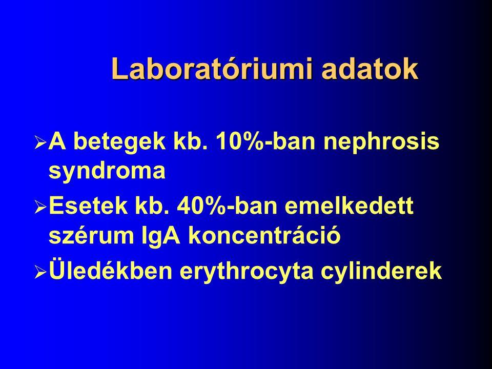 Laboratóriumi adatok A betegek kb. 10%-ban nephrosis syndroma