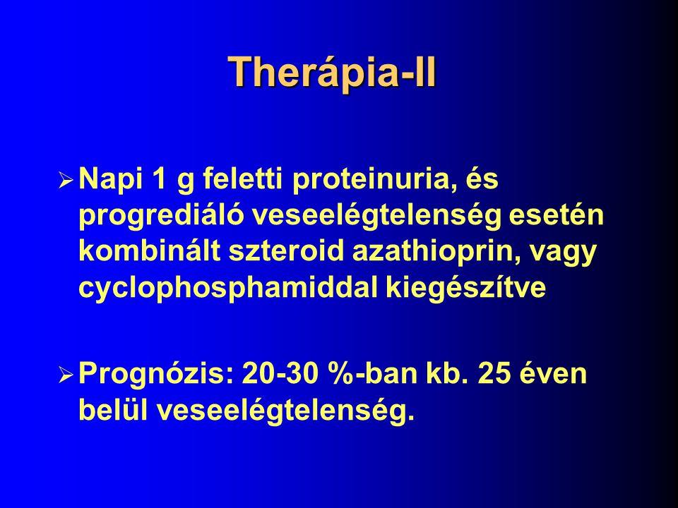 Therápia-II Napi 1 g feletti proteinuria, és progrediáló veseelégtelenség esetén kombinált szteroid azathioprin, vagy cyclophosphamiddal kiegészítve.