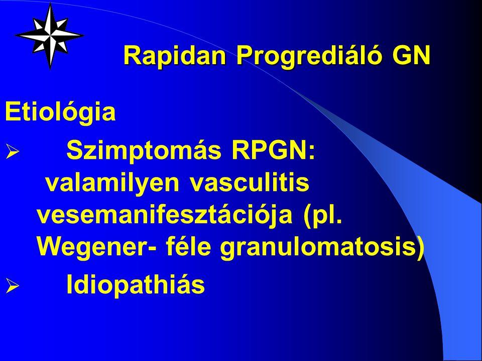 Rapidan Progrediáló GN