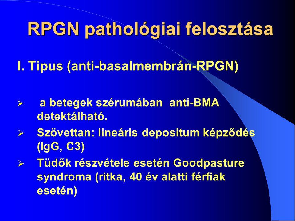 RPGN pathológiai felosztása