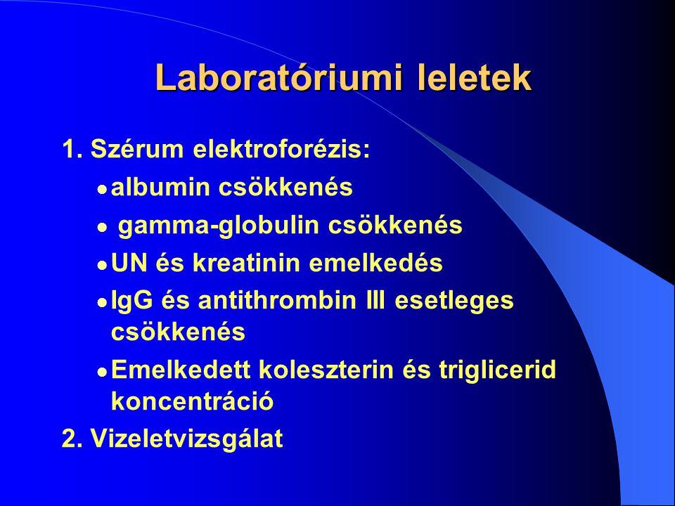 Laboratóriumi leletek