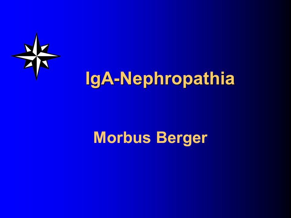 IgA-Nephropathia Morbus Berger