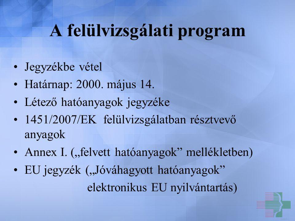 A felülvizsgálati program