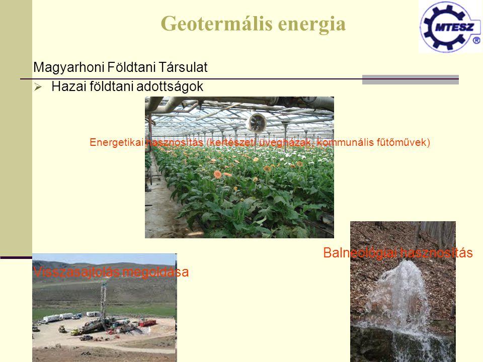 Energetikai hasznosítás (kertészeti üvegházak, kommunális fűtőművek)