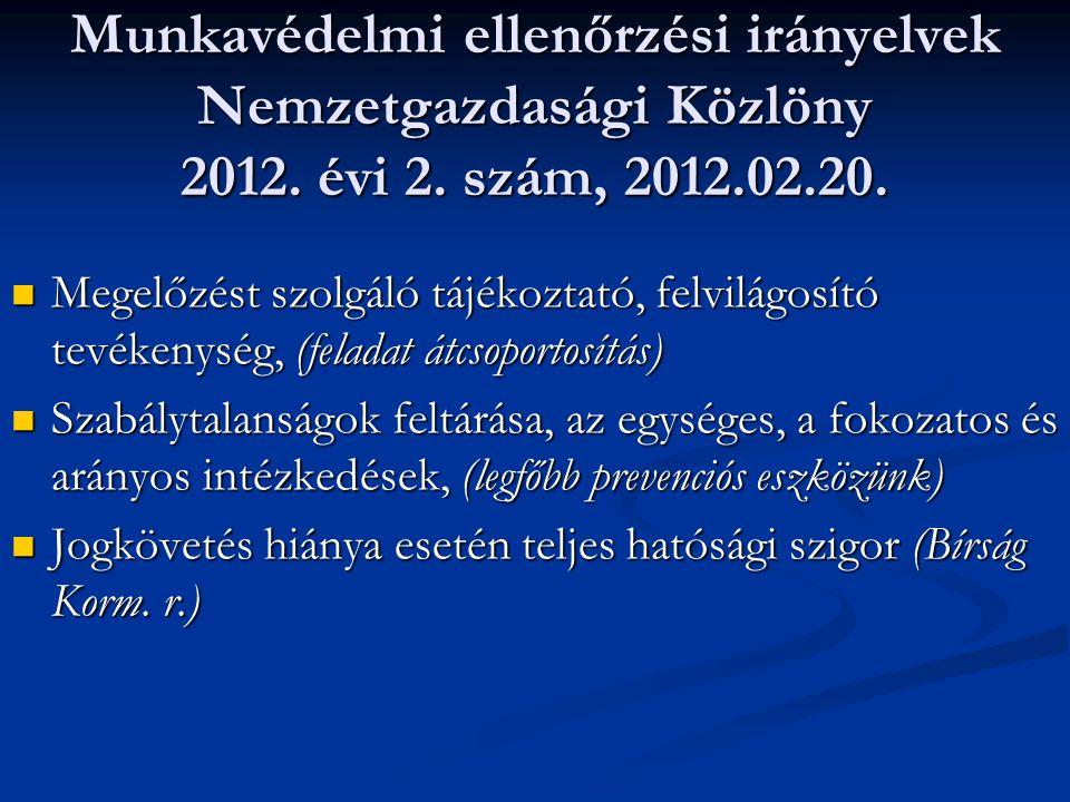 Munkavédelmi ellenőrzési irányelvek Nemzetgazdasági Közlöny 2012. évi 2. szám, 2012.02.20.