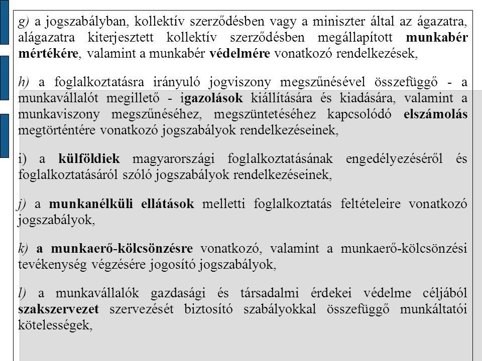 g) a jogszabályban, kollektív szerződésben vagy a miniszter által az ágazatra, alágazatra kiterjesztett kollektív szerződésben megállapított munkabér mértékére, valamint a munkabér védelmére vonatkozó rendelkezések,