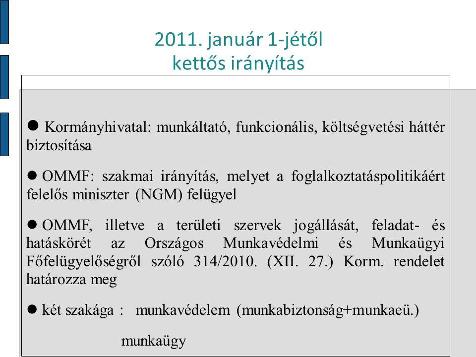 2011. január 1-jétől kettős irányítás