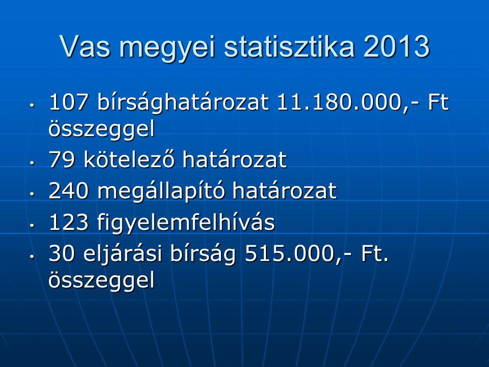 Vas megyei statisztika 2013