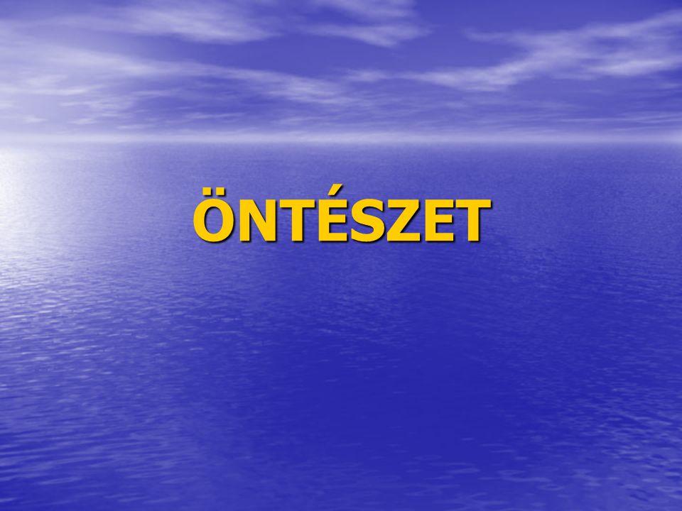 ÖNTÉSZET