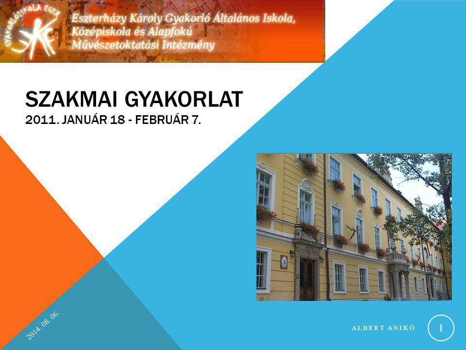 Szakmai gyakorlat 2011. január 18 - február 7.
