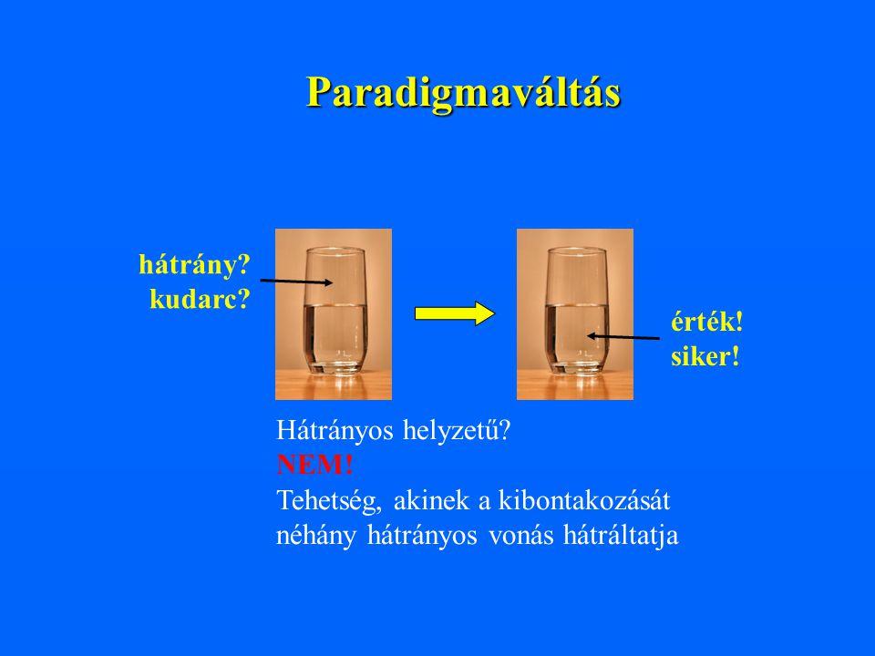 Paradigmaváltás hátrány kudarc érték! siker! Hátrányos helyzetű