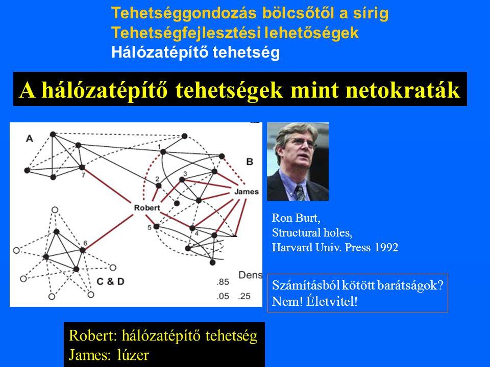 A hálózatépítő tehetségek mint netokraták