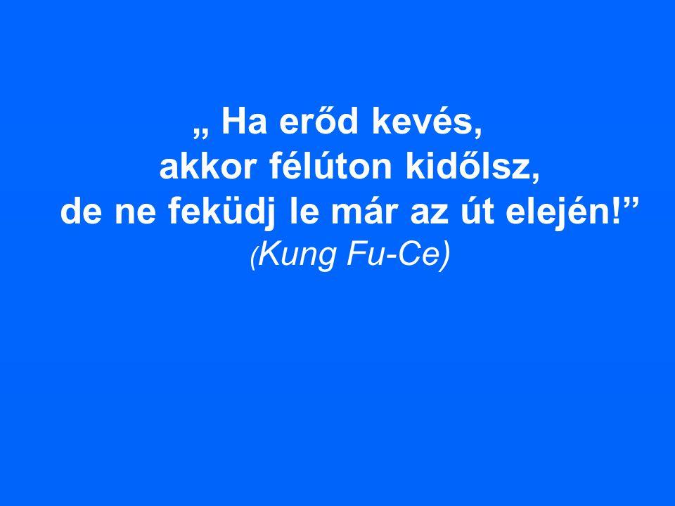 """"""" Ha erőd kevés, akkor félúton kidőlsz, de ne feküdj le már az út elején! (Kung Fu-Ce)"""