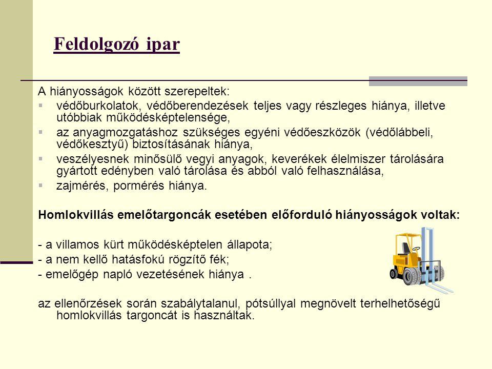 Feldolgozó ipar A hiányosságok között szerepeltek: